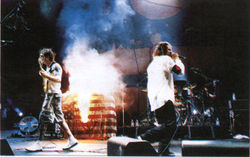RATM burned the American Flag at the 1999 woodstock festival.